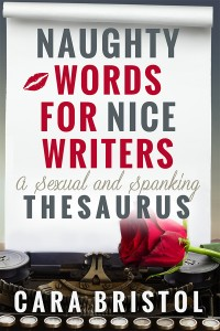 I produced my first nonfiction work, a sexy thesaurus for romance authors, available in ebook and print.
